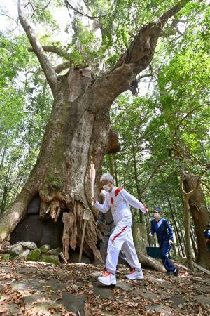 世界遺産・熊野古道を走る聖火ランナー=9日午前、和歌山県那智勝浦町