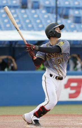 8回阪神1死二塁、中野が右越えにプロ初本塁打となる2ランを放つ=神宮