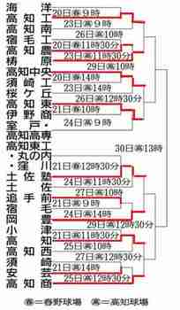 8強出そろう 四国春季大会高知県予選