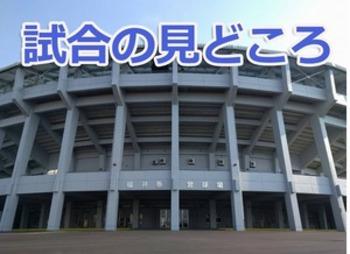 福井大会 県立勢が4強独占、決勝懸け激突 見どころ