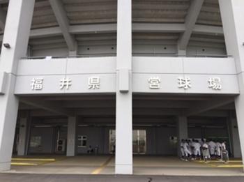 福井大会 27日決勝 坂井-敦賀