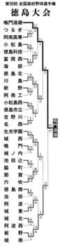 徳島大会 鳴門渦潮が甲子園出場 板野に6-0
