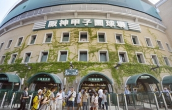 坂井初戦は13日に順延 開会式は8日に、台風5号の影響