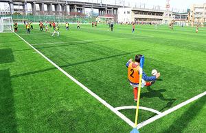 浦和南高、サッカーコートに人工芝 埼玉県内公立校で初