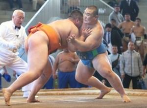 相撲団体、海洋が準優勝 全国高校選抜