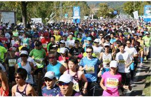 札幌マラソン 1万3千人が快走