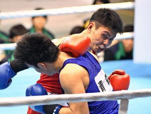 ボクシング成年男子、3人入賞確定 いわて国体第6日
