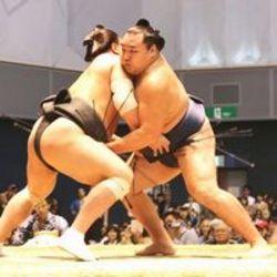 横綱対決鶴竜に軍配 大相撲4年ぶり徳島場所