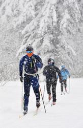 冬将軍が急接近 旭岳温泉クロカンコース、滑走可能に