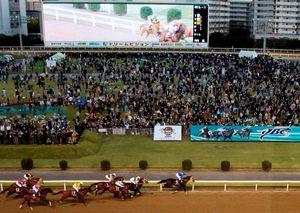 地方競馬の売得金、歴代1位を記録 川崎競馬