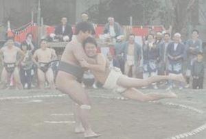 仁井田で待ったなし 高知市の神社で伝統の奉納相撲