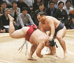 鶴竜、好調遠藤を一蹴 大相撲九州場所