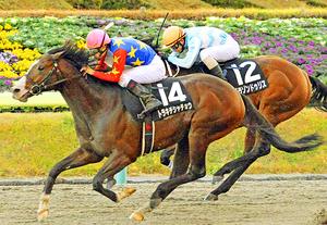 福島民友カップはトラキチシャチョウV 秋の福島競馬・最終日