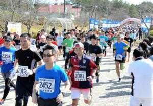世羅ハーフマラソン「最長10キロ」に縮小