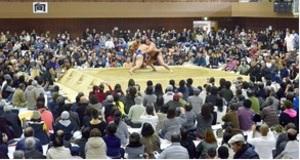 8年ぶり大相撲奄美場所 里山ら地元出身力士に声援