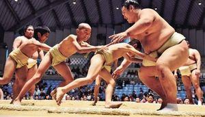 迫力と腕力、間近で堪能 大相撲沖縄場所