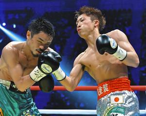 井上尚が圧倒6回TKO WBOスーパーフライ級