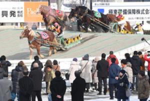 元日ばんえい競馬に声援 帯広単独開催10年