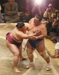 大相撲初場所 かど番琴奨菊暗中模索、4敗目陥落危機