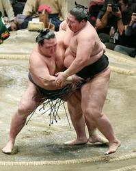 大相撲初場所、稀勢の里初優勝 横綱昇進の可能性も