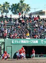 プロ野球 キャンプ 宮崎市3球団観客伸び悩み