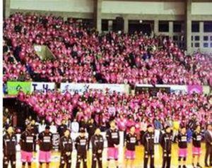 バスケB1秋田、過去最多4457人が来場 会場ピンクに染まる