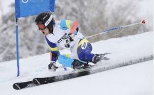 札幌冬季アジア大会 スキー男子大回転 18歳小山が狙って金