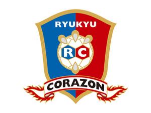 琉球敗れる、大崎電気に20―29 ハンド日本リーグ