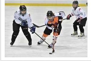 アイスバックス、準々決勝で敗れる アイスホッケー全日本女子B