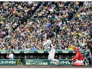 球春到来 阪神が甲子園で初オープン戦