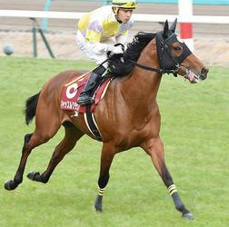中野(舟橋出身)初重賞は12着 中央競馬「弥生賞」