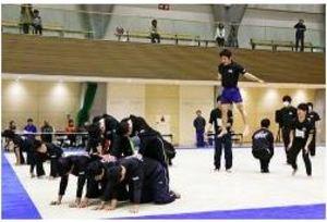 160人が体操の魅力伝える 田辺で演技交流会