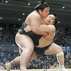 錦木、黒星スタート 大相撲春場所初日