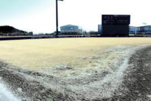 楽天 2軍本拠地を人工芝に 老朽化で改修