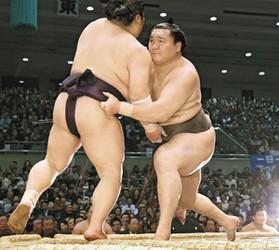 大相撲 白鵬、抜かりなし 小兵対策