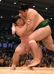 兵庫の力士がつぷり四つ、関取へ火花 大相撲春場所