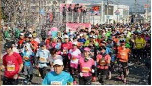 さが桜マラソン回顧 2週間前倒し奏功、完走率92.4%