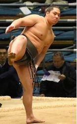 大相撲 元総合格闘家力士の錦城 張り手で「KO勝ち」