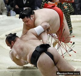 阿武咲(中泊町出身)9勝目、新入幕確実