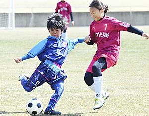 福島県勢3チーム決勝Tへ 郡山サッカーフェス・小学生の部開幕