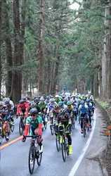 自転車ツール・ド・とちぎ開幕 沿道に1万8千人