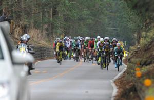 自転車ツール・ド・とちぎ 地方創生へ初開催