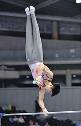 内村逆転、つかんだV10 体操全日本選手権