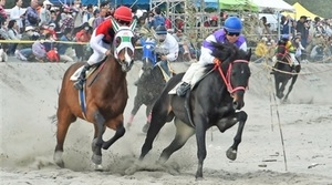 競走馬が砂浜疾走 牧之原「さがら草競馬」