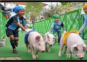 J1川崎 動物と楽しもう 恒例の「フロンターレ牧場」