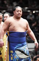 道産子25年ぶり新入幕なるか 旭大星挑む、大相撲夏場所