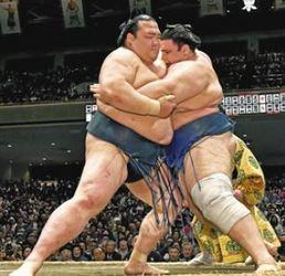 稀勢の里復調の兆し、2敗守る 大相撲夏場所