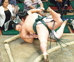 朝乃山、連勝止まり星五分 大相撲夏場所