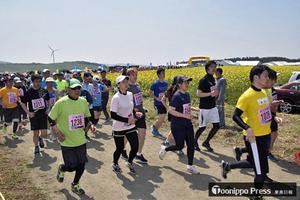菜の花マラソン健脚競う