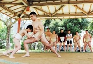 大相撲 稀勢の里効果 兵庫の子ども道場や相撲部活況